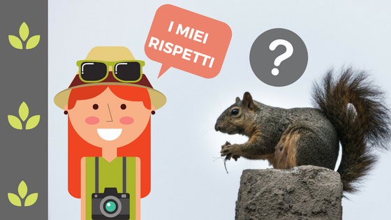 Galateo degli scoiattoli?